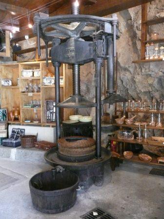 aceite-de-oliva-Montemaggiore-pueblo-produccion-Córcega-Francia