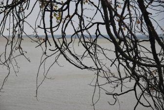 荒涼としたバラトン湖